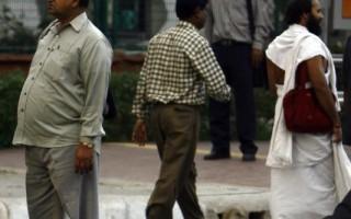 潑猴攻擊 印度新德里副市長墜樓亡