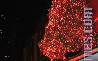 梅西百货圣诞树点亮了