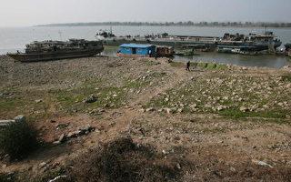 长江流域半世纪最严重秋旱