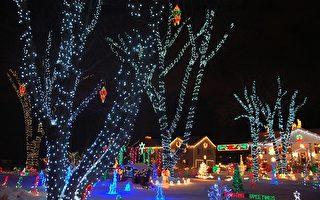 组图:美轮美奂 户外圣诞灯饰