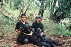 黄美秀保育黑熊 无怨无悔