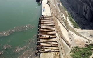 中國長江三峽水庫藻類污染嚴重