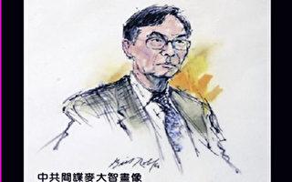 麦大智被判刑24年 法官控其背叛美国