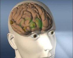 當心壞心眼曝光 專家偵測腦波 解讀人心