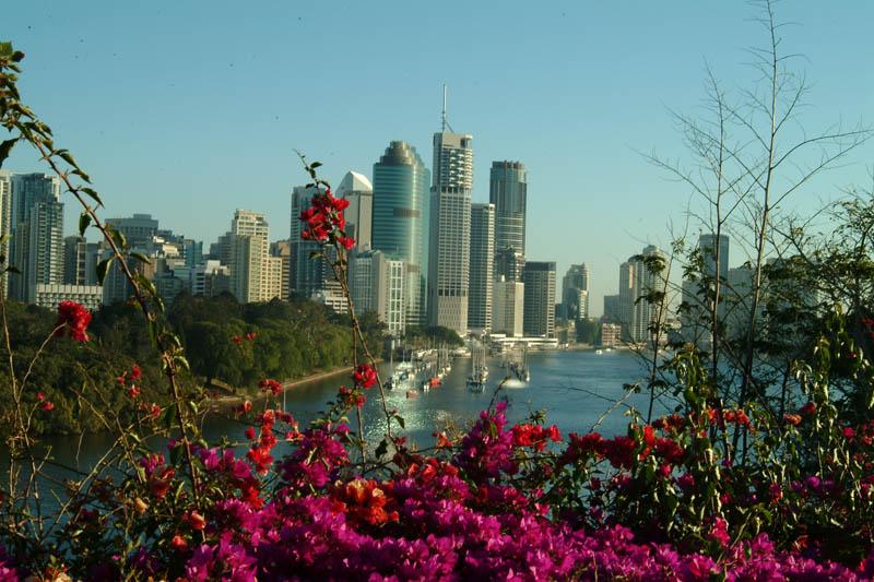 昆州房市整體表現亮眼 悉尼公寓市場復甦