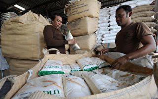 全球糧價暴漲 各國競相簽密約搶糧