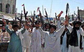 巴基斯坦塔利班領袖下令停火