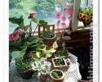 在阳台随意筑出的绿意,也能拥有简单却无价的幸福。(杨美琴摄影∕大纪元)
