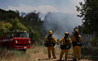 圣塔克鲁兹野火蔓延  州长宣布紧急状态
