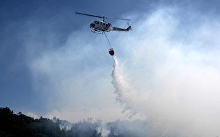 圣塔克鲁兹森林大火已获控制