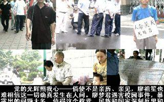 廖祖笙:張德江任副宰相是中國的恥辱