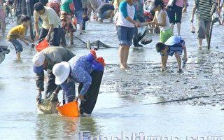 2008觀光赤嘴園 推展水上活動