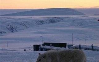 加拿大宣布野心计划  准备探北极地底下资源