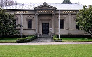 澳聯邦撥110萬修復阿市百年建築