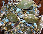 【市场营销系列】威叟船长的美味德拉华螃蟹