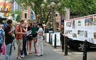 国际人权日 澳政府拟展开人权宪章咨询