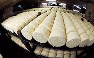牛肉衝突 美法「乳酪戰爭」將起