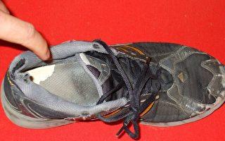 明珠:温总理,请不要跟鞋子斗气