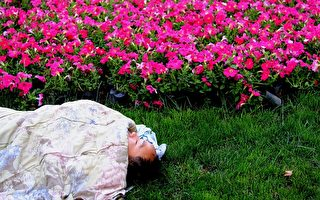 夢境是否能反映自我 並改變行為?