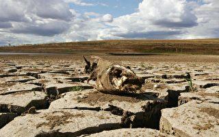 澳洲度過有史以來最熱夏天 降雨量減少三成