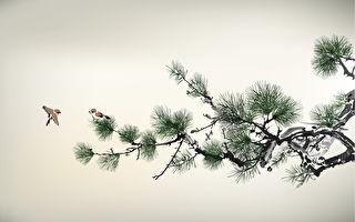 古代诗人的修炼故事:王维