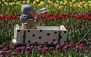 春季過敏症的治療