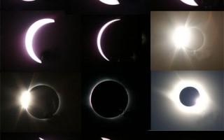 张杰连:2009年的黑暗与光耀