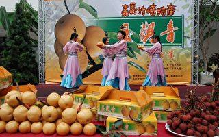 玉观音高接梨成功上市,嘉义县政府举办促销活动。 (摄影:苏泰安/大纪元)