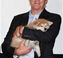 組圖:新片《忠犬八公的故事》日本首映