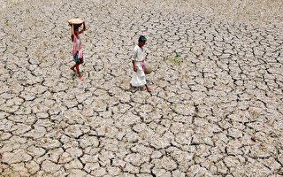 乾旱影響印度一半土地
