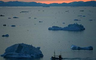 红狐北迁 植物早生 暖化冲击北极生态