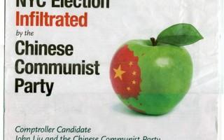 【热点互动】华人是否应该选华人?