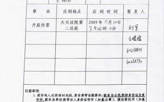 北京市大兴区人民法院民事传票(照片由受害人提供)