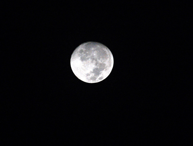 月球含水量出乎意料 來源成謎