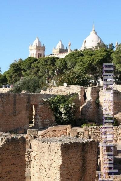 千面突尼西亚 古文明与异国风融合共存