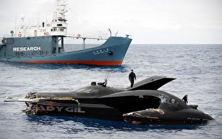 鲸鱼战争 日纽官员讨论责任归属