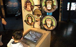 科博館特展  教你聽懂動物語言