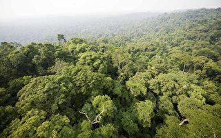 争议再起 巴西通过亚马逊大坝环评