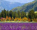 摘取山野的綺麗,攜回滿園的翠綠,以及 生命的奇蹟。(圖:大紀元)