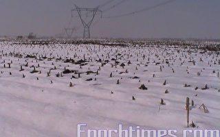 北京最低溫或降到-10℃ 漠河現極寒天氣
