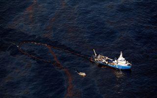 漏油成重大环境灾难 美全面动员除油