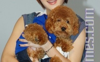 郭靜首次攜愛犬入鏡  工作特別來勁