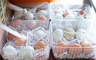 5種使用蛋殼的妙法