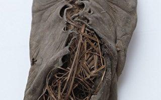 世界最古老的花边皮鞋出土 5500年历史