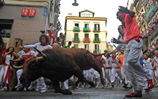 西班牙奔牛第3天  再傳傷患