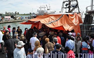 搶購三文魚  加漁人碼頭人群如潮