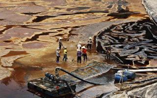 中国1/5耕地面积重污染 面临粮食安全危机