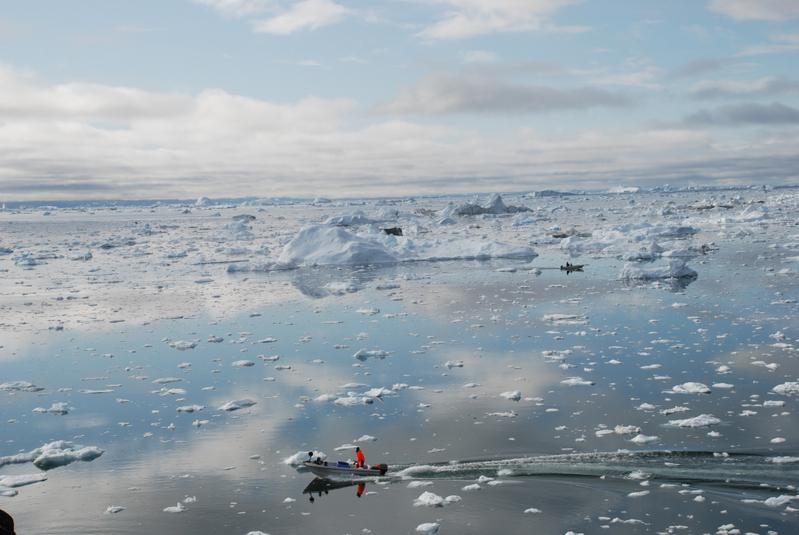五角大樓破解中共圖謀格陵蘭島企圖