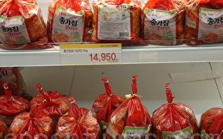 氣候影響  韓國白菜價格創史新高