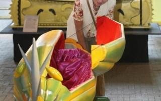 迦納設計製作奇「棺」 成旅遊勝地